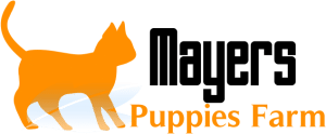 Adopt a puppy at Mayers Puppies