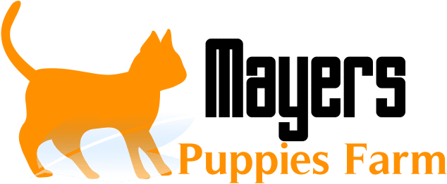 Mayers Puppies Farm